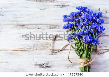 vaso · velho · mesa · de · madeira · flor · folha · verão - foto stock © simply