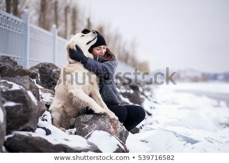 meisje · hond · winter · gelukkig · mooie · leggen - stockfoto © blasbike