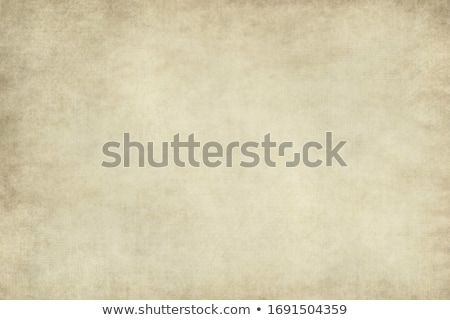 Papyrus Paper Background Stock photo © THP