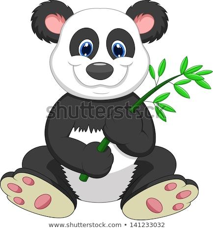 Zdjęcia stock: Panda · cartoon · jedzenie · bambusa · uśmiech · zielone