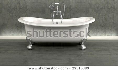 Klassiek bad op pootjes en kranen met douche-opzetstuk in een modern interieur Stockfoto © Kjpargeter