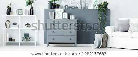 Mellkas fiókok izolált fehér otthon háttér Stock fotó © ozaiachin