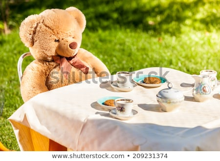 Teddy bear picnic Stock photo © Forgiss