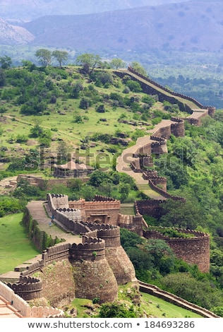 Hindoeïsme tempel fort muur ontwerp architectuur Stockfoto © Mikko