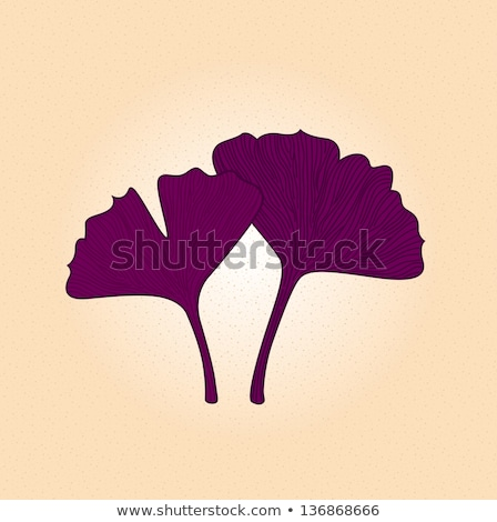Purple gingko leaf isolated on brown background Stock photo © lordalea