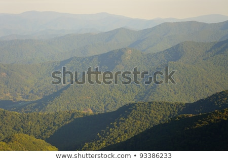 Appalachian Mountains from Mount Mitchell, the highest point in  Stock photo © alex_grichenko