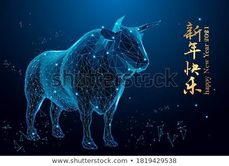Translating Concept on Triangle Background. Stock photo © tashatuvango