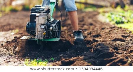Homem jardinagem vermelho pronto Foto stock © mybaitshop