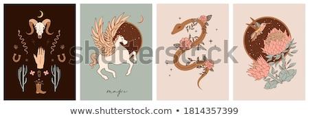 Mystical Horseshoe Stock photo © silkenphotography