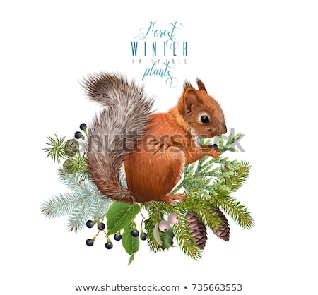 Christmas decoration with cones and squirrel Stock photo © dariazu