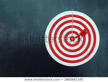 Financial Management - Arrows Hit in Red Target. Stock photo © tashatuvango