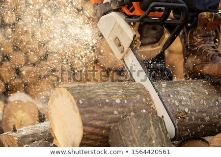 wood saw stock photo © cynoclub
