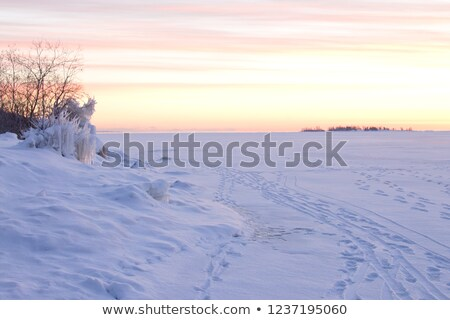 Early Morning Snowdrift Stock photo © mpetersheim