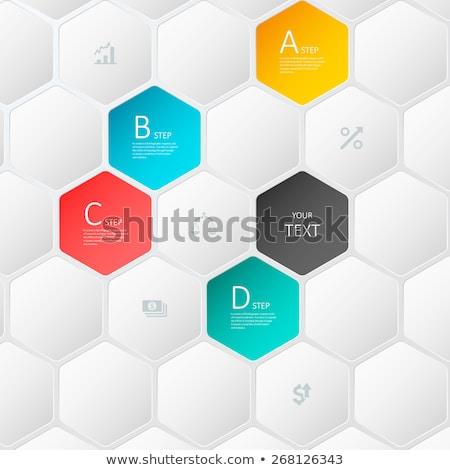 modern · vektor · absztrakt · 3D · kaptár · infografika - stock fotó © jiunnn