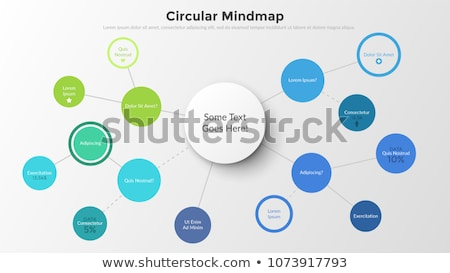 infographics modern template to classify data and informations stock photo © davidarts