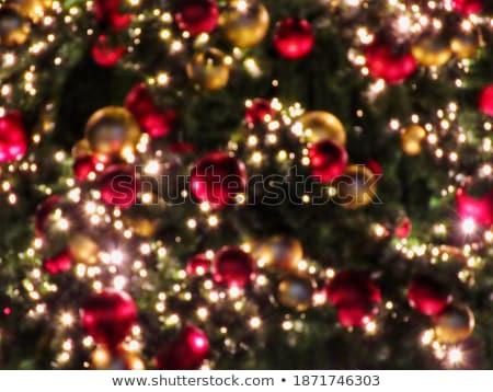 shining defocused highlights in trees stock photo © smileus