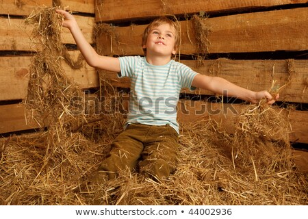 Portrait of boy playing in pile of straw in hayloft. Horizontal format. Stock photo © Paha_L