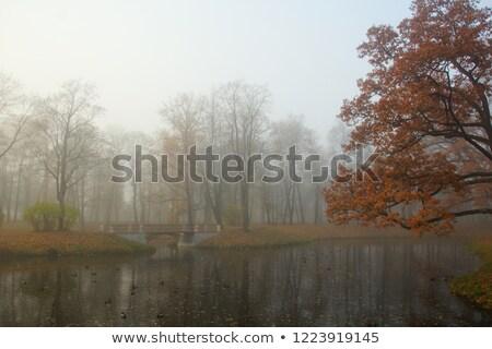悲しい 午前 公園 橋 秋 ストックフォト © SergeyAndreevich