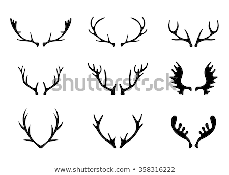 Flat design icon of deer's antlers   Stock photo © angelp