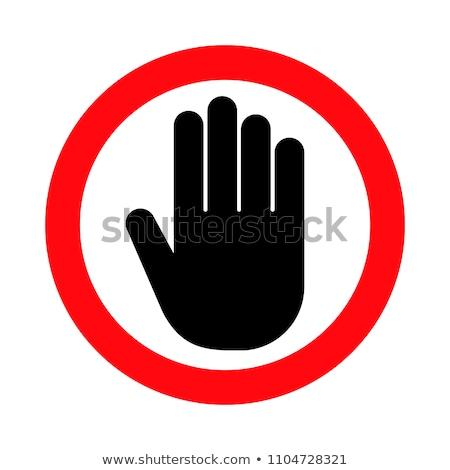 Toegang icon ontwerp veiligheid web pagina Stockfoto © WaD