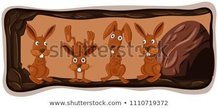 Kentsel tavşan clipart vektör bahar dizayn Stok fotoğraf © doddis