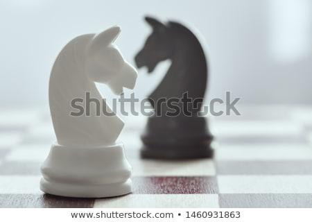 Twee schaakstukken schaakbord zwart wit ander Stockfoto © pakete