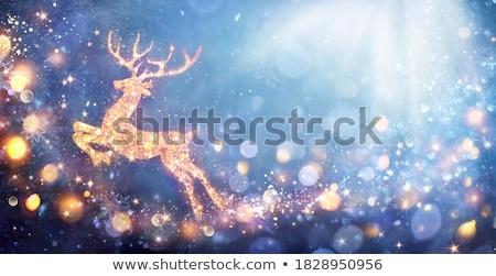 ren · geyiği · kar · taneleri · star · toz · Yıldız · beyaz - stok fotoğraf © limbi007