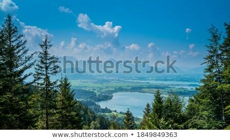 Bavarian lake Bannwaldsee from above Stock photo © kb-photodesign