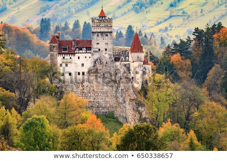 Dracula castle, Romania Stock photo © joyr