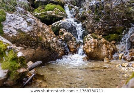 высокий долины пейзаж горные лет зеленый Сток-фото © Antonio-S