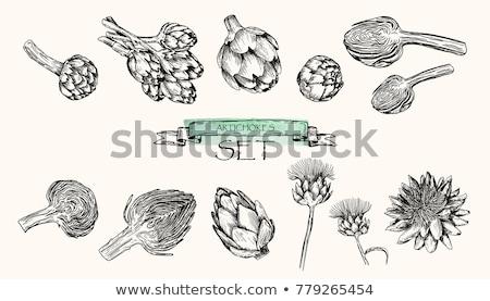 monochrome vector hand drawn food stock photo © frescomovie