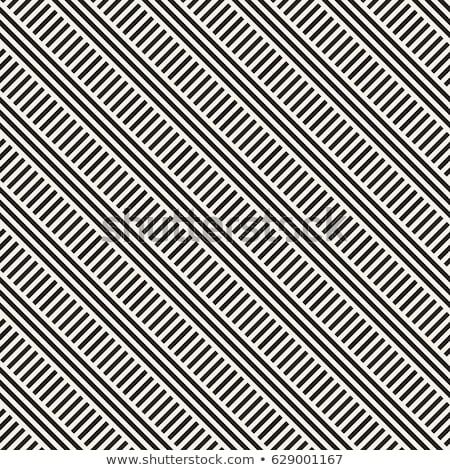 Párhuzamos csíkok vektor végtelenített monokróm minta Stock fotó © Samolevsky