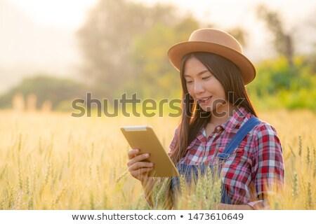 Female farmer using tablet computer in rye crop field Stock photo © stevanovicigor