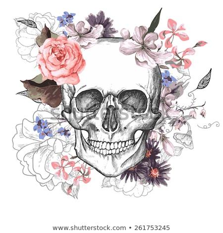 mexikói · koponya · szett · színes · koponyák · virág - stock fotó © frescomovie