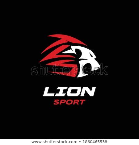 Foto stock: Leão · bola · de · tênis · esportes · mascote · zangado · animal