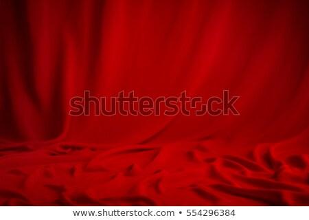 Sevmek tutku seksi pencere kapalı Stok fotoğraf © Anna_Om