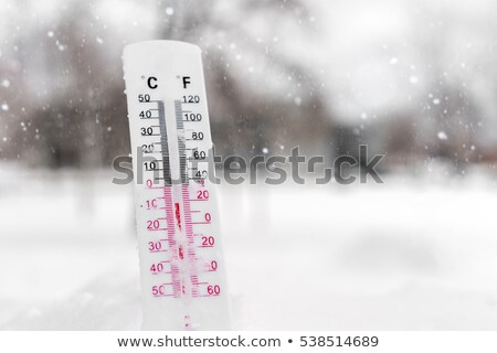 Termometro neve basso temperatura pesante Foto d'archivio © AndreyPopov