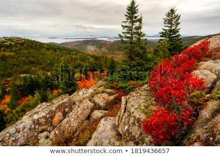 Manzara park Maine ABD bulut Stok fotoğraf © IS2