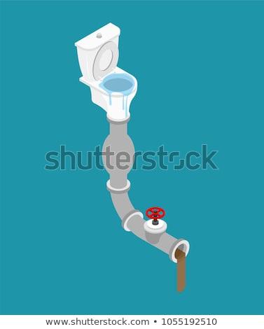 rioolwater · toilet · kom · riool · vector · water - stockfoto © popaukropa