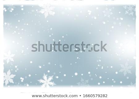 Hermosa copo de nieve blanco decorativo vector aislado Foto stock © ayaxmr