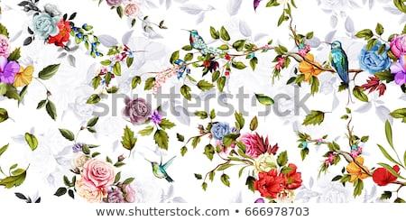 Boeket rozen hand tekening gestileerde bloemen Stockfoto © ESSL