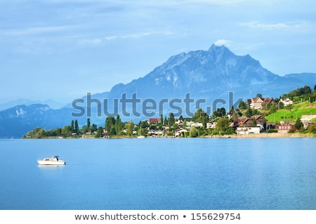 lake lucerne alpine peaks and green slopes view stock photo © xbrchx