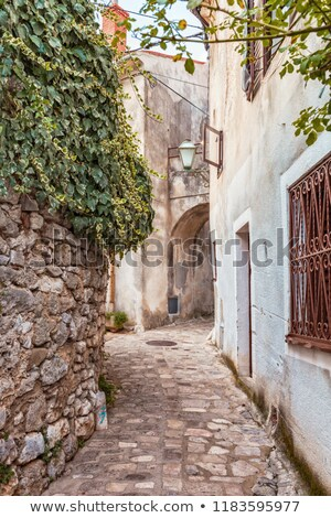 old narrow street with stone houses in dubrovnik in croatia stock photo © bezikus