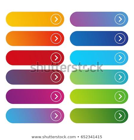 Vector kleurrijk vierkante web knoppen moderne Stockfoto © blumer1979
