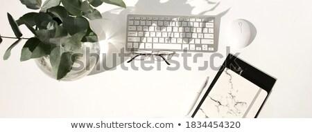 sombras · branco · tabela · óculos · buquê · água - foto stock © ruslanshramko