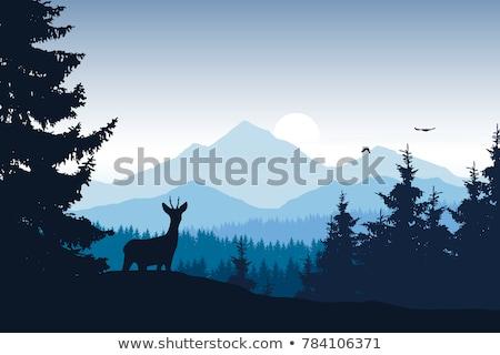 Winter Wald Landschaft Bäume Hirsch Schneeflocken Stock foto © liolle