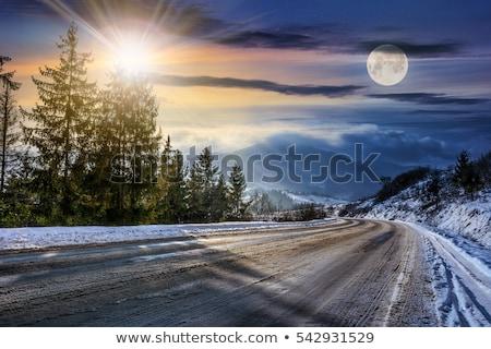 nieve · cubierto · pino · árboles · cielo · azul - foto stock © lovleah