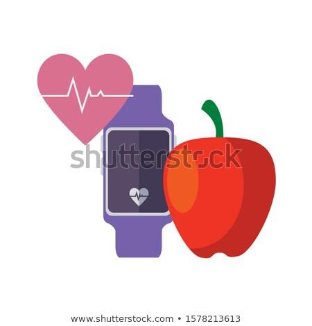 Wristwatch and Apple Fruit Set Vector Illustration Stock photo © robuart