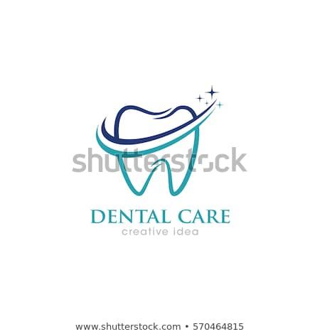 teeth vector logo colorful icon stock photo © blaskorizov