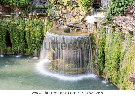 овальный фонтан Villa Италия мнение здании Сток-фото © boggy